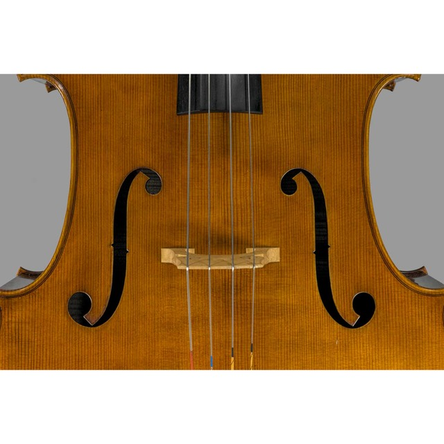 Photo of Polstein & White Strad cello top center
